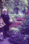 Blumen im Park