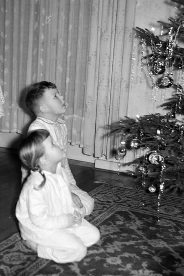 christbaum, Geschwister, Kindheit, Perserteppich, Tannenbaum, Weihnachten, Weihnachtsbaum