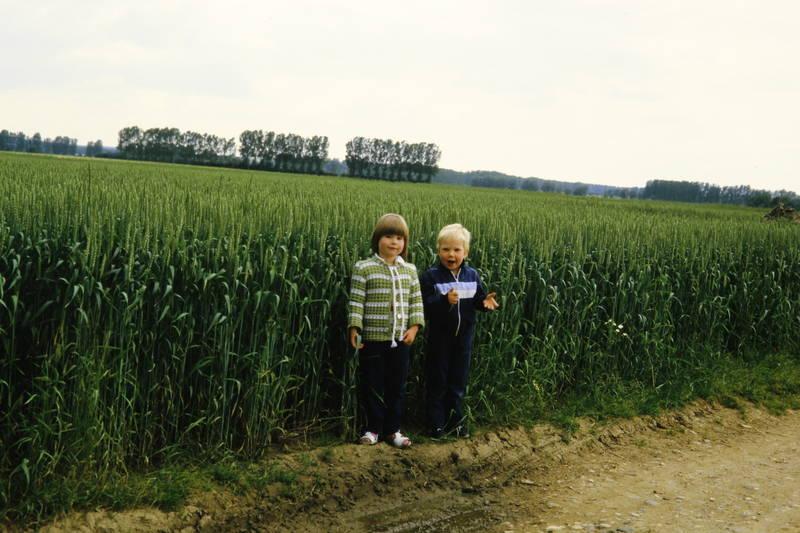 feld, Feldweg, getreidefeld, Kindheit