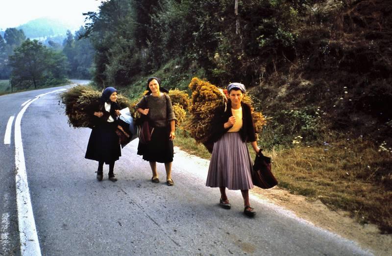 arbeit, landfrauen, Radtour, transport, urlaub, Urlaubsreise