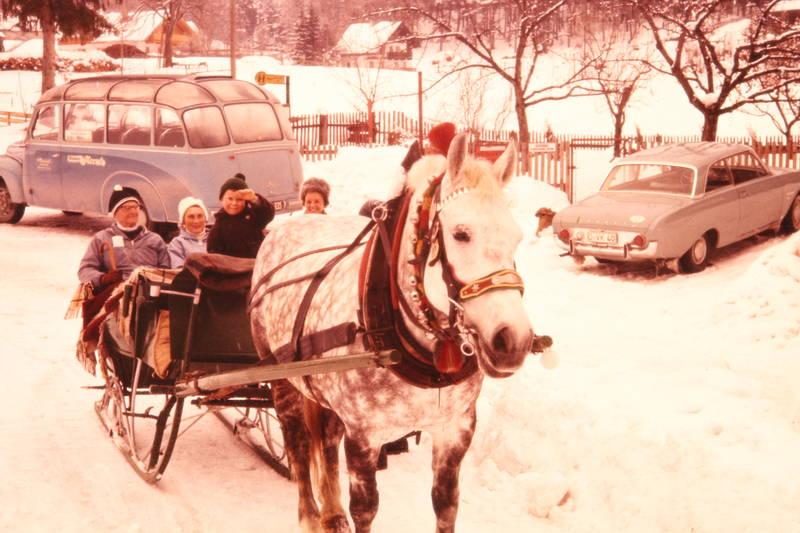 auto, ford, Ford-Taunus, Ford-Taunus-17m, Hanomag, KFZ, Kutsche, lachen, panorama-bus, panoramabus, Panoramadach, Pferd, Pferdeschlitten, PKW, schnee, Spaß, winter