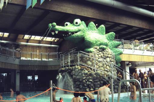 Krokodil im Schwimmbad