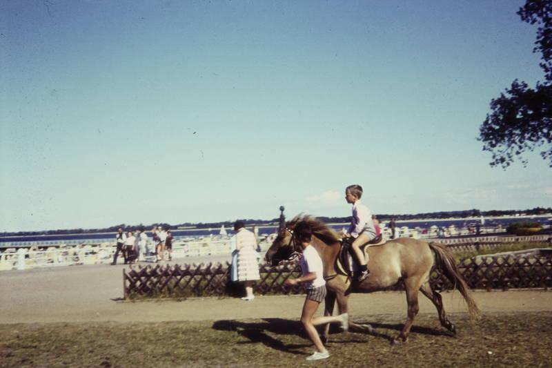Kindheit, Pferd, reiten, Ritt, Spaß, strand, urlaub