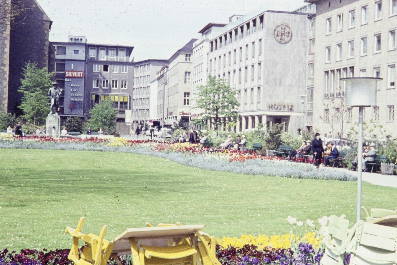 Blumen Bielefeld blumen blühen in bielefeld wdr digit