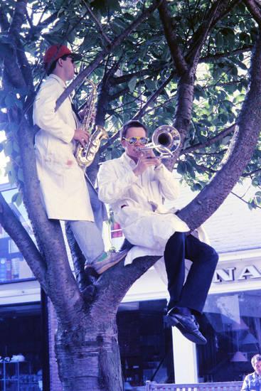 baum, instrument, musik, posaune, Saxofon, sonnenbrille