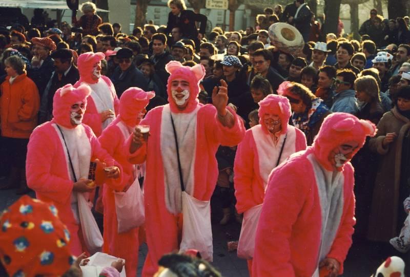 Brauchtum, karneval, Panther, Rosarot