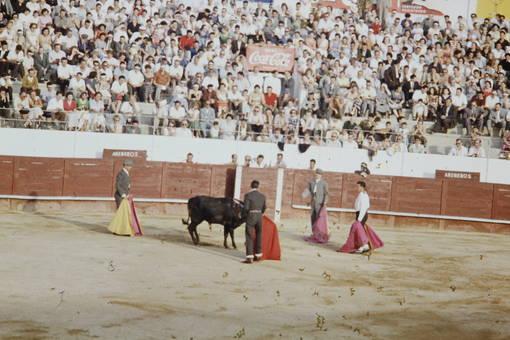 Ein Stier, vier Toreros