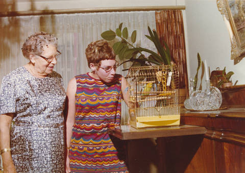 Vogelkunde