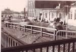 Elmshorn, Hafen