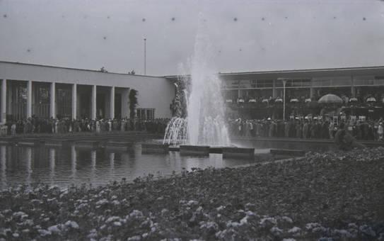 Blick über den Wassergarten