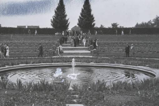 Brunnen in der Dahlien-Arena