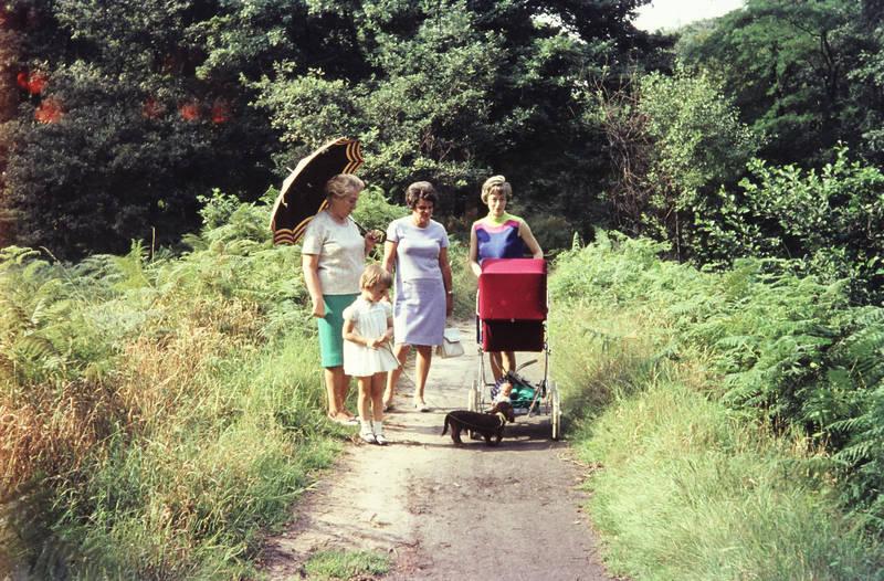 dackel, kinderwagen, kleid, mode, regenschirm, Sonnenschirm, spaziergang