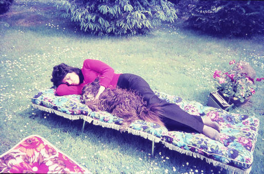 Mittagsschlaf im Garten