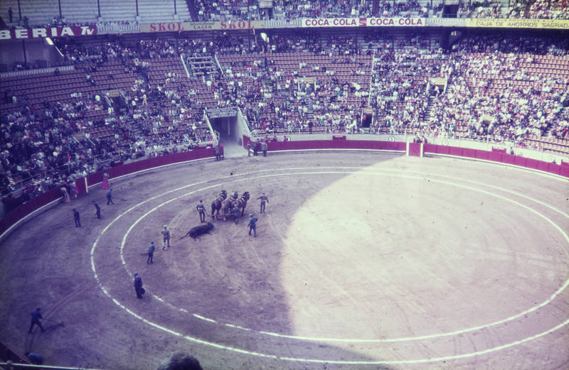 arena, Matador, pferde, Spanien, Stier, stierkampf, Torero, tribüne, urlaub
