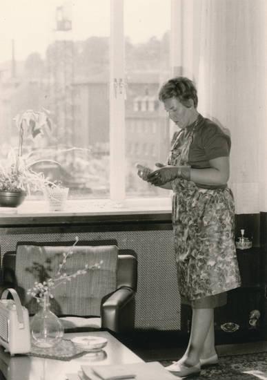Fenster, Hausarbeit, haushalt, Hausputz, pflanzen, putzen, Radio, schürze