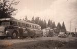 Omnibus und Pferd