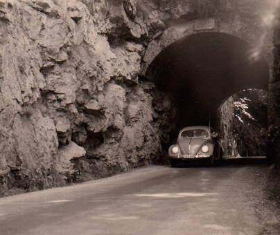 Käfer im Tunnel