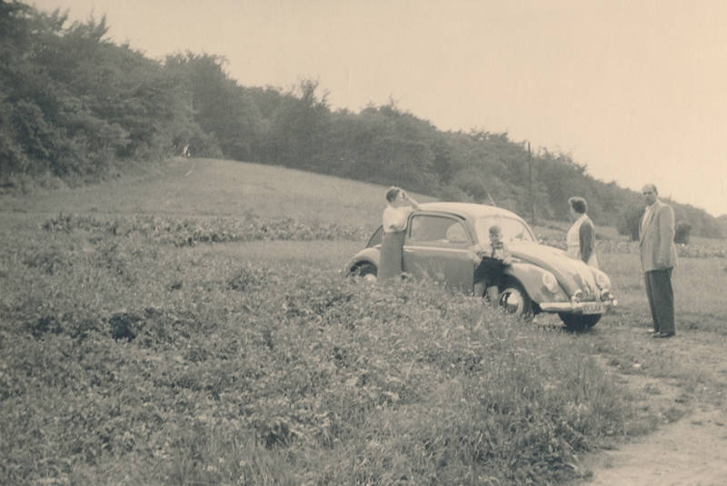 ausflug, familie, kind, Kindheit, vw, VW Käfer, VW-Käfer, wiese, Zusatzscheinwerfer