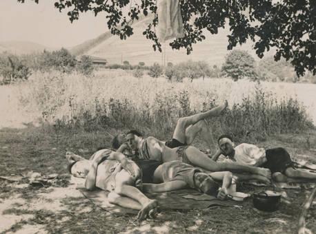 Mittagsschlaf im Westerwald