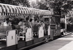 Gruga-Bahn