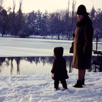 Am zugefrorenen See