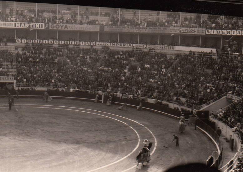 arena, barcelona, Stier, stierkampf, Stierkampfarena, Torero