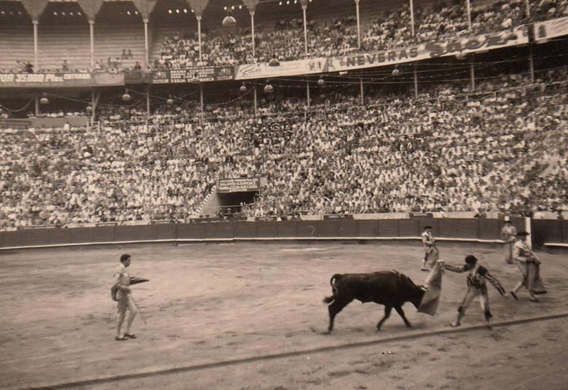 arena, barcelona, Spanien, Stier, stierkampf, Stierkampfarena, Torero