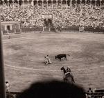 Kampf mit dem Stier
