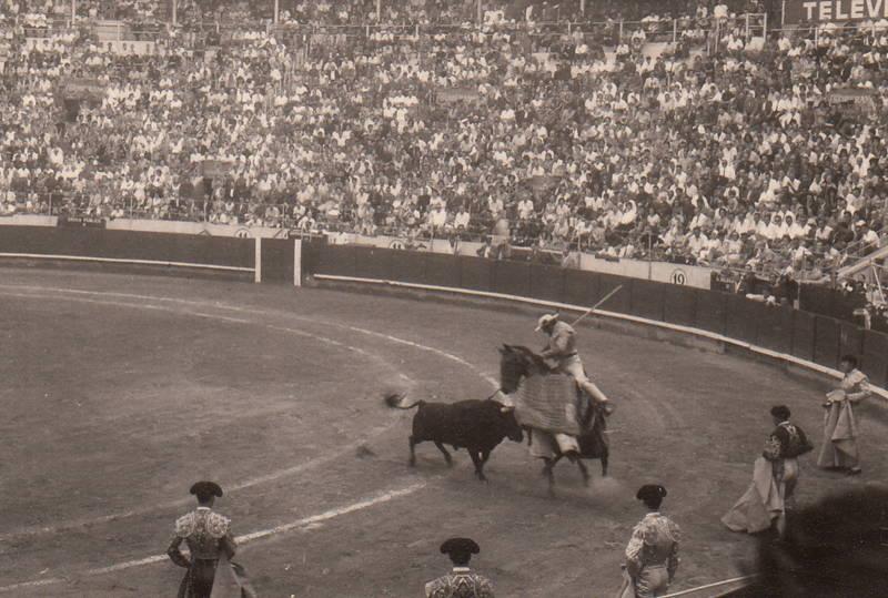 arena, Pferd, Spanien, Stier, stierkampf, Stierkampfarena, Torero, Zuschauer