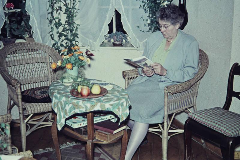 abendlektüre, Buch, einrichtung, Korbstuhl, lektüre, Lesen, Obstteller, tisch, wohnzimmer