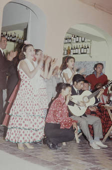 Flamencotänzer