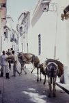 In den Gassen von Córdoba