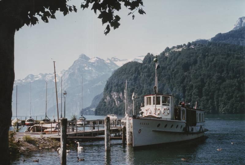 boot, Brunnen, Schweiz, Vierwaldstättersee