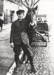 Mit Pferd und Wagen