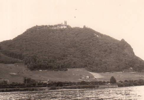 Der schöne Rhein