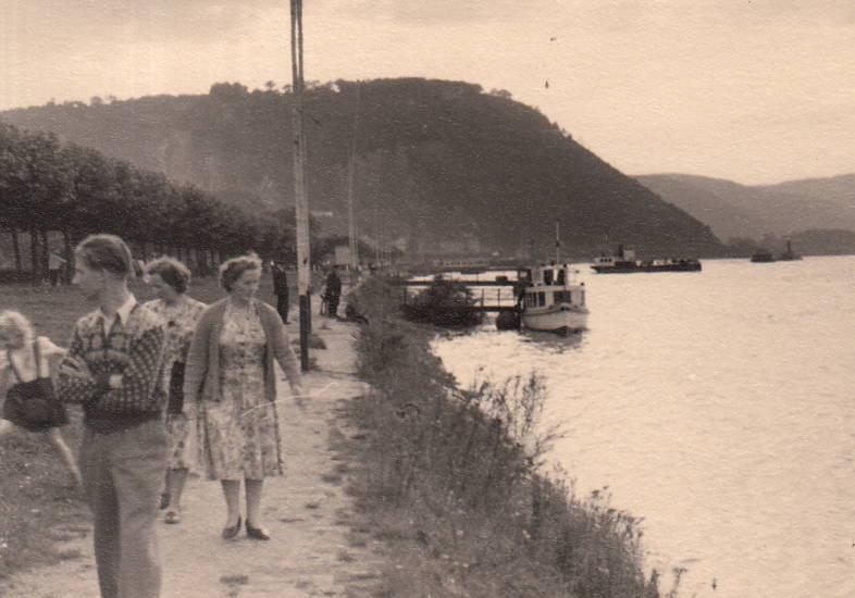 fluss, Rhein, Rheinufer, spaziergang