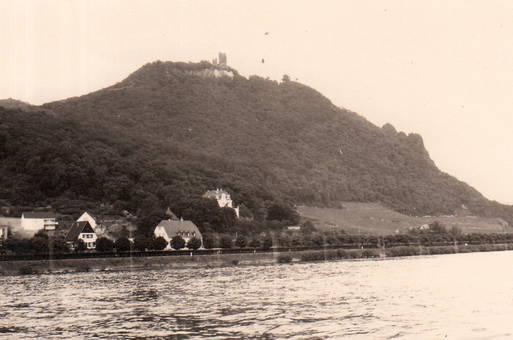 Am Rhein am Drachenfels