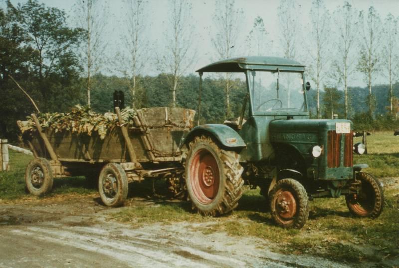 Ackerwagen, Hanomag, Runkel, Runkelernte, traktor