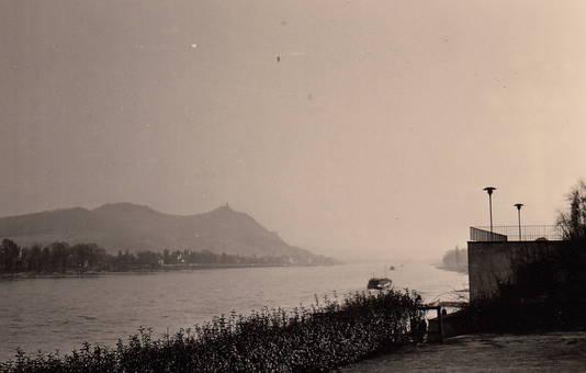 Am Rhein bei Königswinter