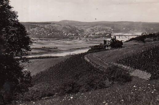 Rheinblick aus Linz