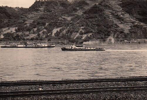 Am Rhein in Kestert