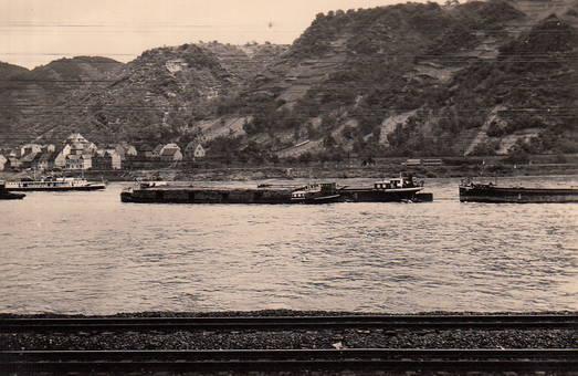 Am Rhein von Kestert