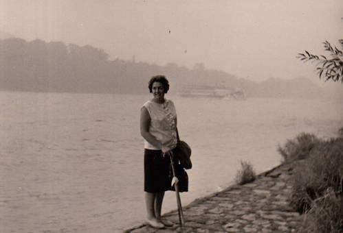 Am Rhein in Bad Honnef
