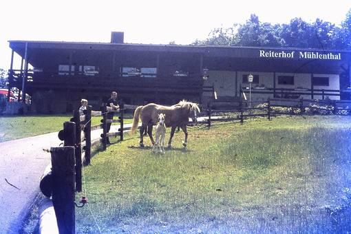 Reiterhof Mühlenthal