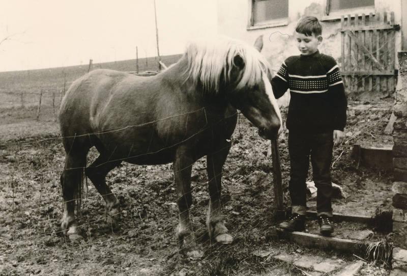 Kindheit, Pferd, Pullover, streicheln, Weide