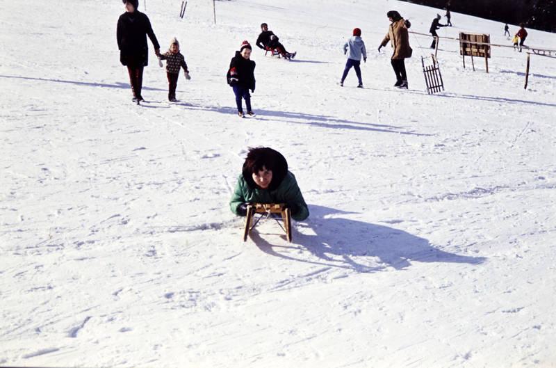 ausflug, familie, hügel, kind, Kindheit, schlitten, schlitten fahren, schnee, winter