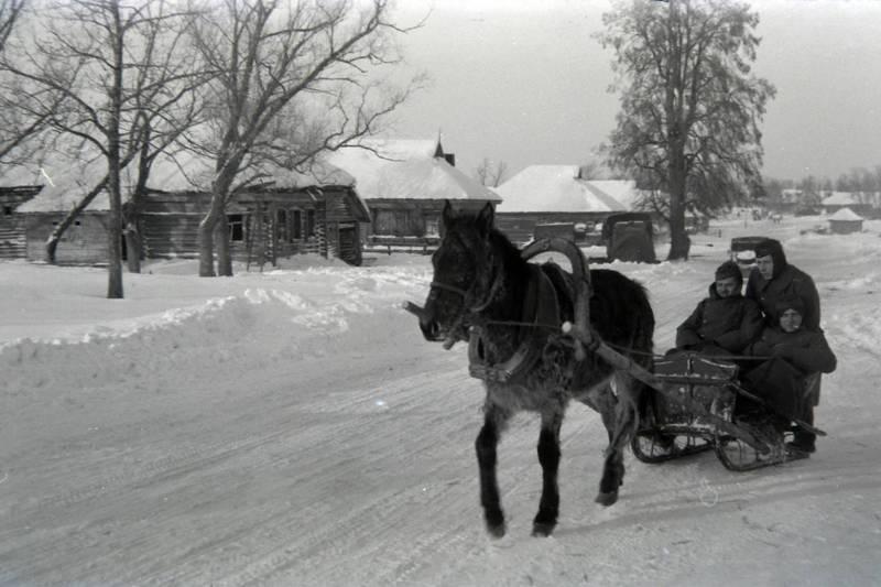 Kriegswinter, ostfront, Pferd, schlitten, Soldaten, Wehrmacht, winter