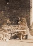 An der Ruine Drachenfels