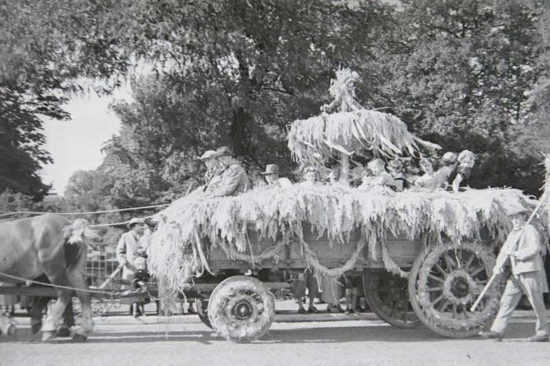 festwagen, Heugabel, Pferd, Stroh, wagen