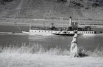 Schiffchen am Weinberg
